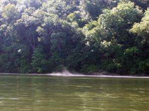 Lake Taneycomo