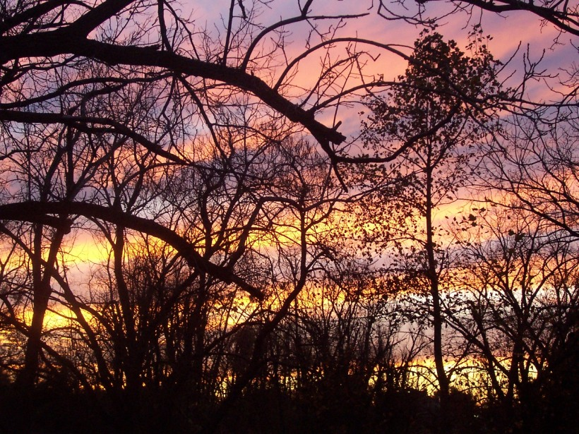 November Sunset Our Backyard